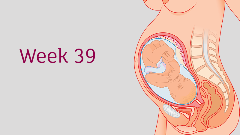 39-weeks-pregnent